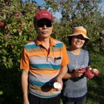 apple_picking-02